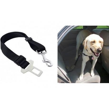 Bezpečnostný pás pre psa
