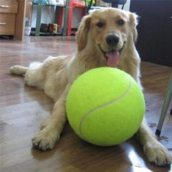 Tenisák Maxi 25 cm