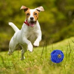 Interaktívna hračka pre psov - M