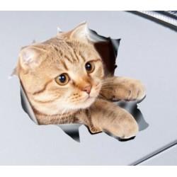 Nálepka - mačka